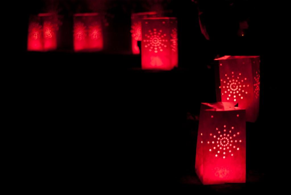 lampions pour jardin